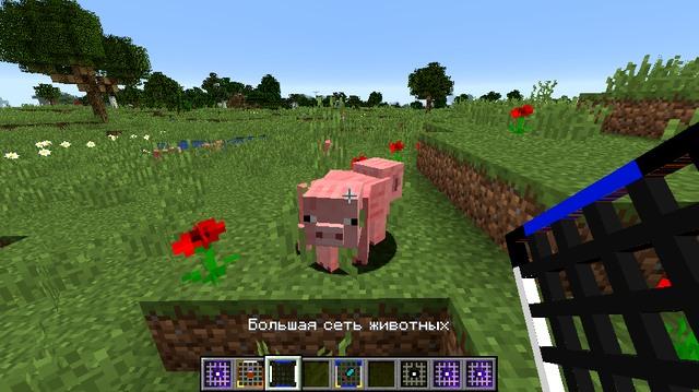 Мод AnimalNet на Майнкрафт 1.13.2